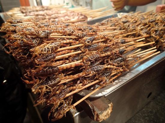 Spiedini di insetti a Wangfujing